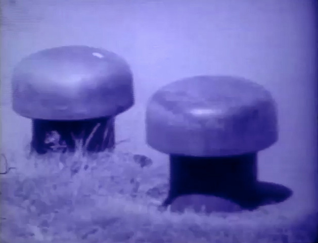 Watch Steel Mushrooms