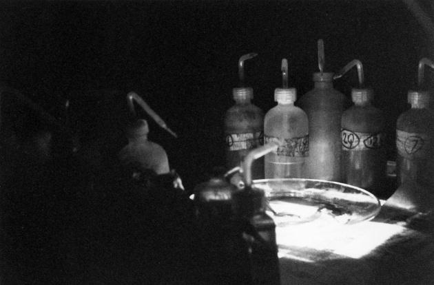 Michael de Courcy, Paul Spong Performance, 1968