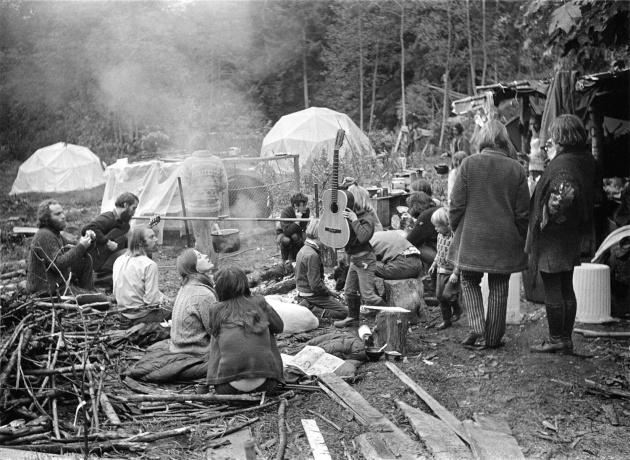 Michael de Courcy, Mushroom Festival, 1969